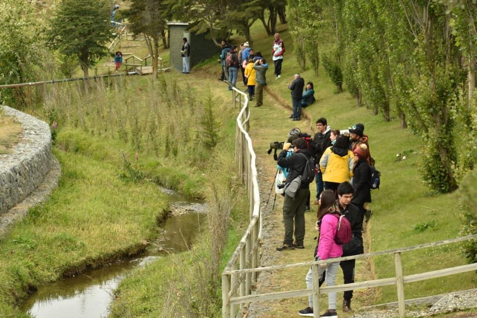 Festival de los Humedales Patagónicos finalizó con recorrido por parque Cruz de Froward y Tres Puentes